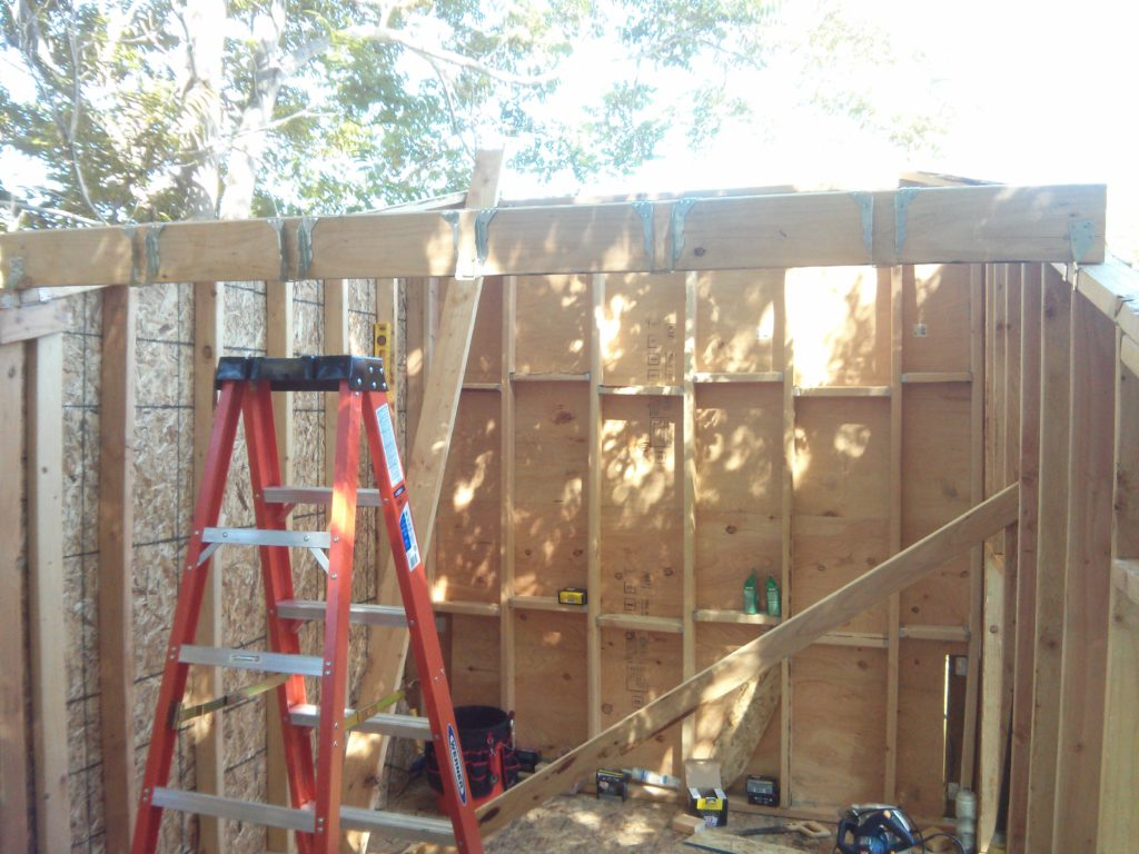 Center roof support. My ceiling joists tie into this.